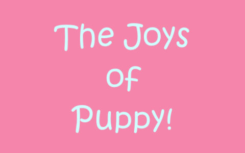 Puppy Dearest